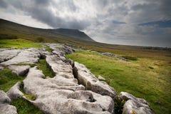Pavimento de pedra calcária Imagens de Stock Royalty Free