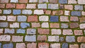 Pavimento de pedra com musgo Fotos de Stock