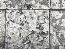 Pavimento de pedra da placa Imagens de Stock Royalty Free