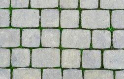 Pavimento de piedra con la hierba verde fotografía de archivo libre de regalías