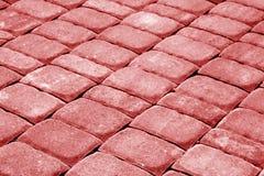 Pavimento de piedra del adoquín en tono rojo Fotos de archivo libres de regalías
