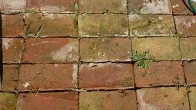 Pavimento dei mattoni Immagini Stock Libere da Diritti
