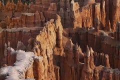 Pavimento del canyon di Bryce Immagine Stock