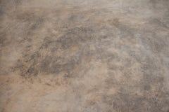 Pavimento del cemento Immagine Stock