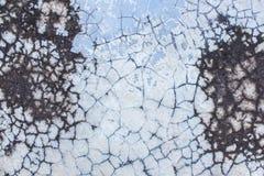 Pavimento del cemento del grung della crepa Fotografia Stock