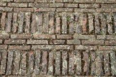 Pavimento del ladrillo Fotografía de archivo libre de regalías
