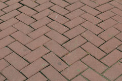 Pavimento del mattone di Brown Fotografie Stock Libere da Diritti