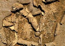 Pavimento del suolo Immagini Stock Libere da Diritti