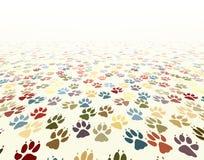 Pavimento della zampa Fotografia Stock Libera da Diritti