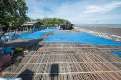 Pavimento di bambù nel posto per la fabbricazione della pasta del gamberetto sotto il sole Fotografie Stock Libere da Diritti