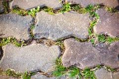 Pavimento di calcestruzzo Fotografie Stock Libere da Diritti