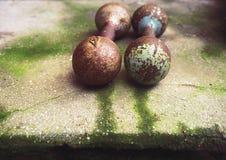 Pavimento di calcestruzzo della vecchia testa di legno arrugginita con muschio Fotografia Stock