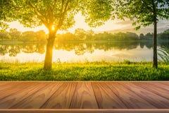 Pavimento di legno di Brown con gli alberi vicino al lago ed all'erba verde Immagini Stock Libere da Diritti