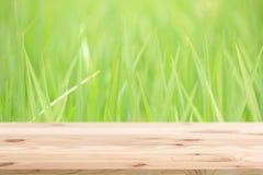 Pavimento di legno con il campo di erba verde per il prodotto della natura del fondo Immagini Stock