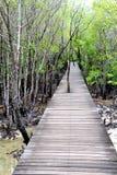 Pavimento di legno con il ponte nella foresta Fotografia Stock