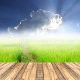 Pavimento di legno con il risone verde in backgro del cielo blu e del campo Fotografia Stock