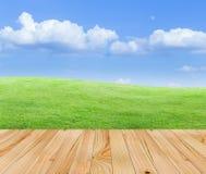 Pavimento di legno con la vista della natura Fotografie Stock Libere da Diritti