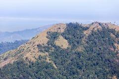 Pavimento di legno del terrazzo del balcone sull'alta montagna tropicale di punto di vista della foresta pluviale Fotografia Stock Libera da Diritti