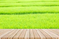 Pavimento di legno sul giacimento del riso Fotografie Stock Libere da Diritti