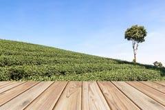 Pavimento di legno vuoto sul fondo del campo del tè Fotografie Stock