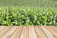 Pavimento di legno vuoto sul fondo del campo del tè Fotografie Stock Libere da Diritti