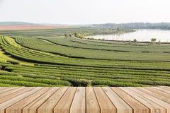 Pavimento di legno vuoto sul fondo del campo del tè Immagini Stock Libere da Diritti