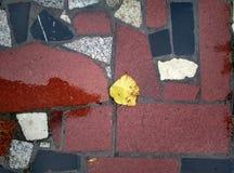 Pavimento di marmo Fotografie Stock