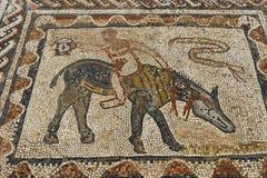 Pavimento di mosaico a Volubilis vicino a Meknes nel Marocco Volubilis è un Amazigh parzialmente scavato, poi città romana nel Ma immagine stock libera da diritti