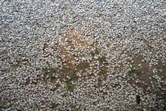 Pavimento di pietra Fotografia Stock Libera da Diritti