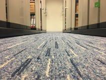 Pavimento di tappeto Fotografia Stock Libera da Diritti