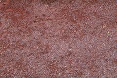 Pavimento di Tezontle Immagini Stock