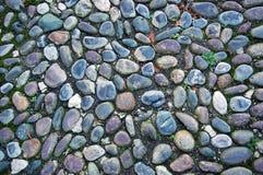 Pavimento do cascalho coberto com a textura do musgo Imagem de Stock Royalty Free