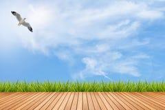 Pavimento ed erba di legno sotto cielo blu e l'uccello Immagine Stock