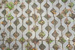 Pavimento feito dos tijolos Imagens de Stock Royalty Free