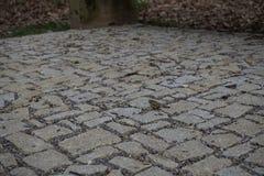 Pavimento hecho de piedras, de adoquines y de grava Foto de archivo libre de regalías