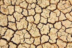 Pavimento incrinato Immagine Stock