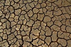 Pavimento incrinato Fotografia Stock