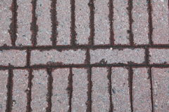 Pavimento La superficie de la carretera de bloques de cemento Fotos de archivo