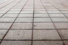 Pavimento pavimentado del guijarro Fotos de archivo