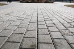 Pavimento pavimentado del guijarro Foto de archivo libre de regalías