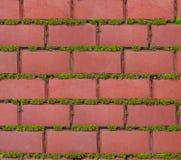 Pavimento Redbrick Foto de Stock