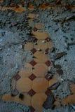Pavimento in ruines Immagine Stock