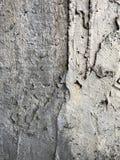 Pavimento ruvido Immagini Stock