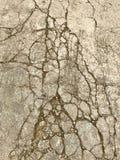 Pavimento ruvido Immagine Stock Libera da Diritti