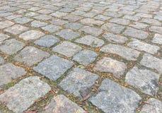 Pavimento velho Fotos de Stock Royalty Free