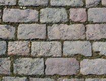 Pavimentos com grama foto de stock royalty free