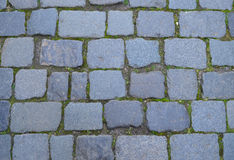 Paving cobblestone. Texture of cobblestone pavement Royalty Free Stock Image