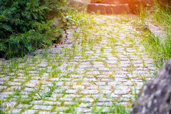 Paving path in sunlight Royalty Free Stock Photo