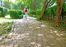 Paving path in the sunshine garden with the back view of jogging woman royalty free stock images