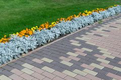 Paving pattern with rectangular shape and brown color. Along paved walkways planted flowerbed with beautiful orange and yellow flowers. In the background, lawn stock photos